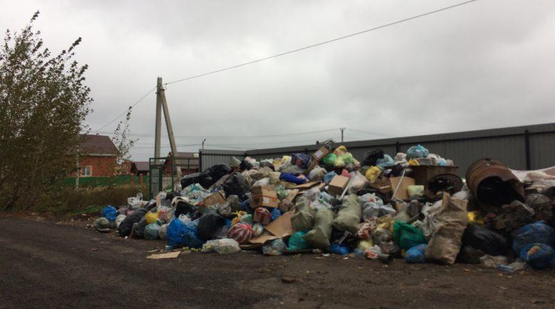 Площадки для сбора мусора в Нагаево