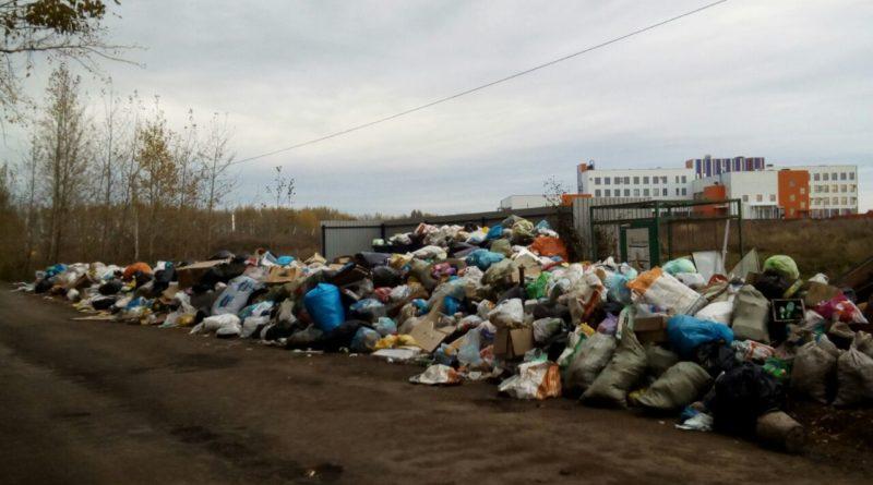 Площадка для мусора завалена мусором в Нагаево