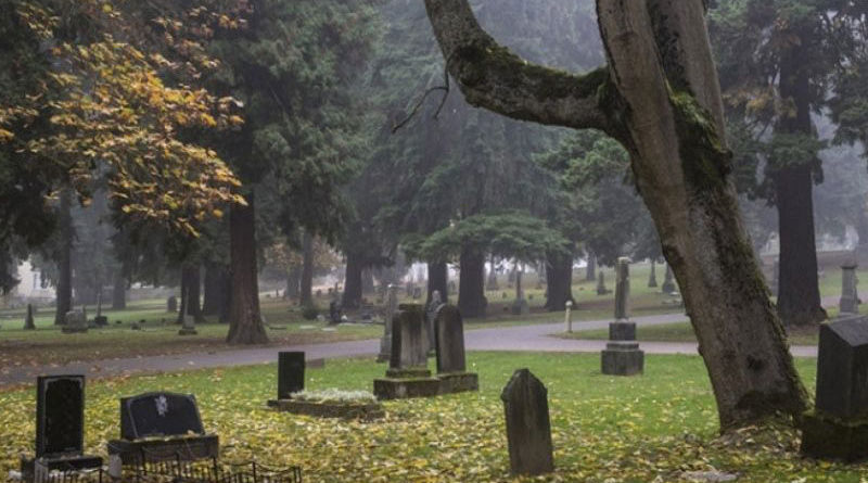 Кладбище в Нагаево, Зинино